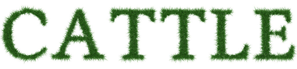 Cattle - 3D rendering fresh Grass letters isolated on whhite background.