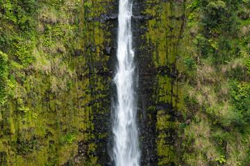 Akak Falls in the Tropical Rain Forest, Big Island, Hawaii
