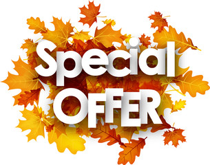 Autumn special offer background with leaves.