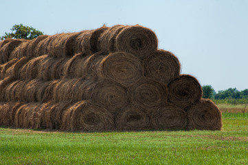 Rolls of haystacks on the field. Summer farm scenery with haystack