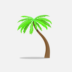 Palm trees in cartoon style isolated on white background Vector Illustration. Tropical summer tree plant symbol