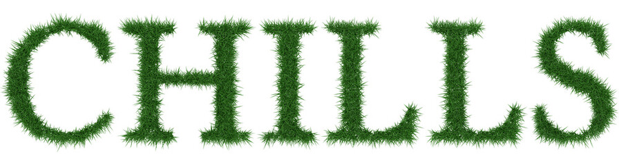 Chills - 3D rendering fresh Grass letters isolated on whhite background.