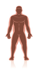 Weight loss - before after image of normal weight and overweight in comparison of a mans body with and without fat deposits - isolated vector illustration.