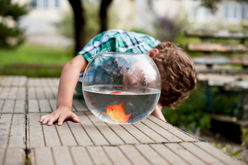 Little boy with aquarium decorative fish