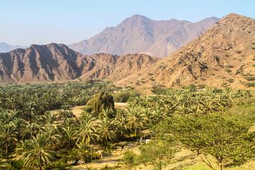 al fujairah landscape