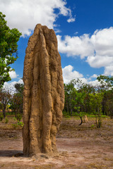 A huge termite mound in Kakadu National Park, Australia