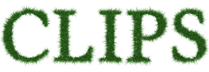 Clips - 3D rendering fresh Grass letters isolated on whhite background.