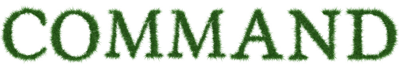 Command - 3D rendering fresh Grass letters isolated on whhite background.