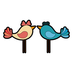 cute couple of doves icon over white background colorful design vector illustration