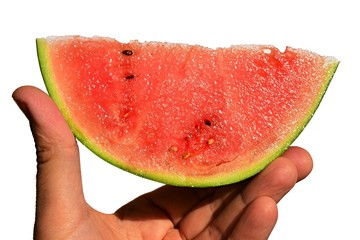 Fresh mini watermelon Citrullus Lanatus var. Lanatus slice held in left hand on white background pointing to the right side