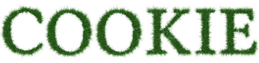 Cookie - 3D rendering fresh Grass letters isolated on whhite background.