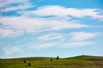 hay stacks on grassy hills under the beautiful cloudy blue sky. lovely Carpathian countryside landscape in early autumn morning
