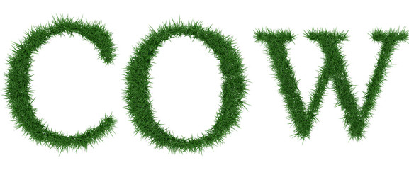 Cow - 3D rendering fresh Grass letters isolated on whhite background.