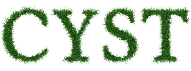 Cyst - 3D rendering fresh Grass letters isolated on whhite background.