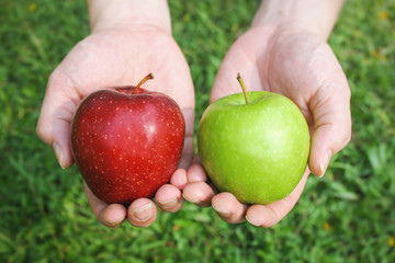 Hands holding red and green apples on green grass background with copy space Wall mural