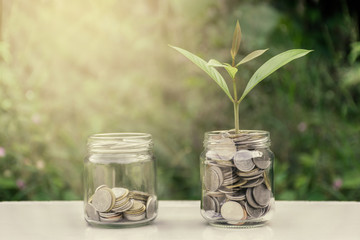 Coins in the bottle with tree in the coin. blur green background . Business Finance and Money concept,Save money for prepare in the future . / productivity growth concept / warm colors tone.