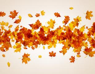 Autumn background with orange leaves.
