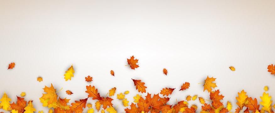 Autumn banner with orange leaves.