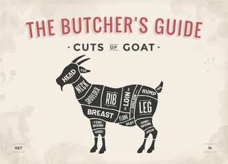 Cut of meat set. Poster Butcher diagram, scheme - Goat. Vintage typographic hand-drawn goat silhouette for butcher shop, restaurant menu, graphic design. Meat, poultry theme. Vector Illustration