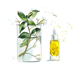 Isolated cosmetics products. Beauty salon. Watercolor hand drawn illustration