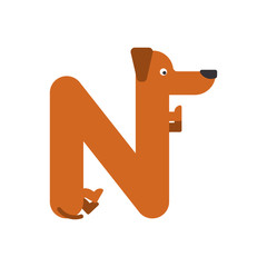 Letter N is dog. pet font. Dachshund alphabet. Lettering home animal