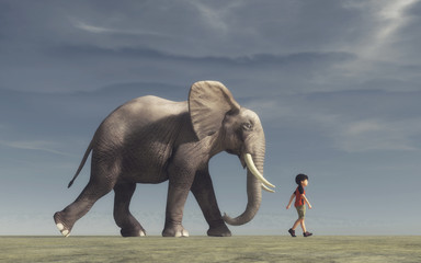 The boy goes and a big elephant