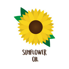 Sunflower oil print, vector illustration drawing of sunflower blossom and green leaves with writing. Isolated on white background.