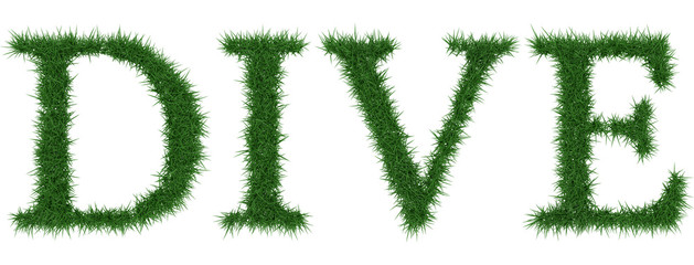Dive - 3D rendering fresh Grass letters isolated on whhite background.