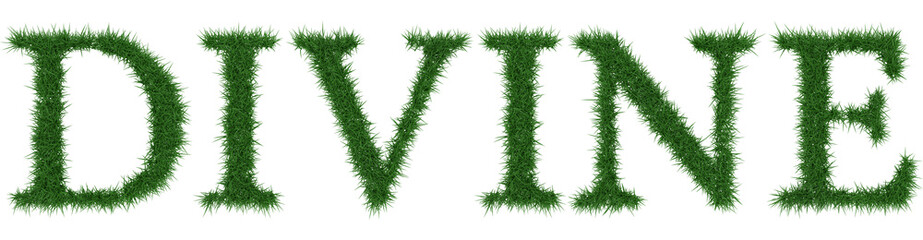Divine - 3D rendering fresh Grass letters isolated on whhite background.