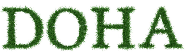 Doha - 3D rendering fresh Grass letters isolated on whhite background.