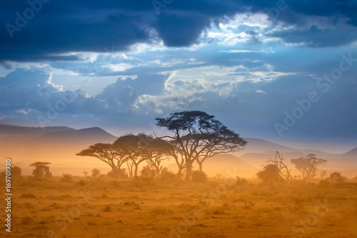 Wall mural African Savannah. The foot of Mount Kilimanjaro.