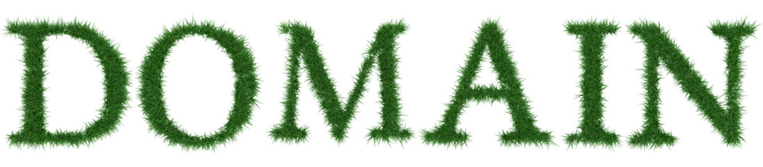 Domain - 3D rendering fresh Grass letters isolated on whhite background.