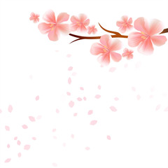 Branch of Sakura with Pink flowers and flying petals isolated on White background. Apple-tree flowers. Cherry blossom. Vector