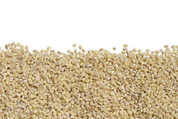 row of dried peeled barley seed isolated on white background