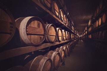 Wine cellar with a row of barrels