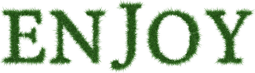 Enjoy - 3D rendering fresh Grass letters isolated on whhite background.