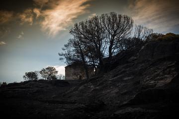 Incendio en el paraje natural de los Ancares leoneses, España