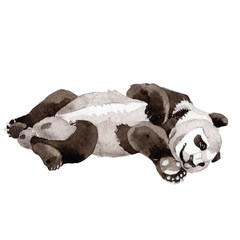 Panda wild animal in a watercolor style isolated. Full name of the animal: panda. Aquarelle wild animal for background, texture, wrapper pattern or tattoo.