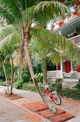 Florida home with bicycle