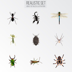 Realistic Damselfly, Poisonous, Dor And Other Vector Elements. Set Of Insect Realistic Symbols Also Includes Scorpion, Bug, Mantis Objects.