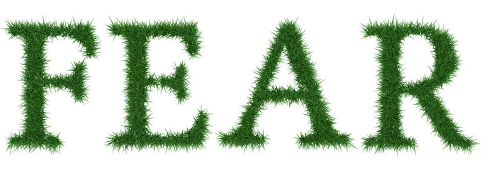 Fear - 3D rendering fresh Grass letters isolated on whhite background.
