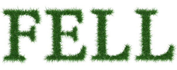Fell - 3D rendering fresh Grass letters isolated on whhite background.