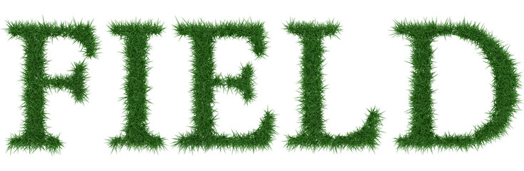 Field - 3D rendering fresh Grass letters isolated on whhite background.