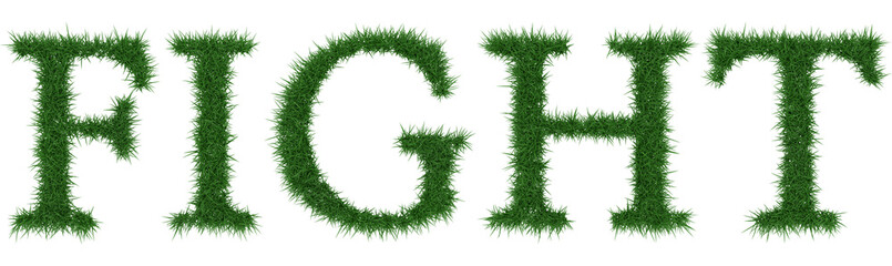 Fight - 3D rendering fresh Grass letters isolated on whhite background.