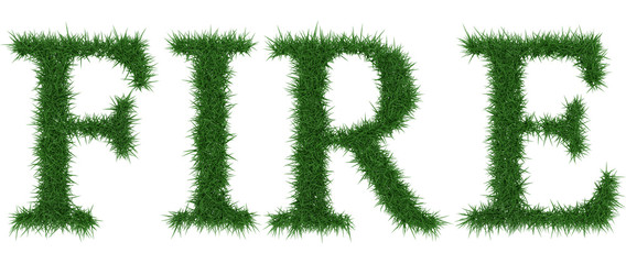 Fire - 3D rendering fresh Grass letters isolated on whhite background.