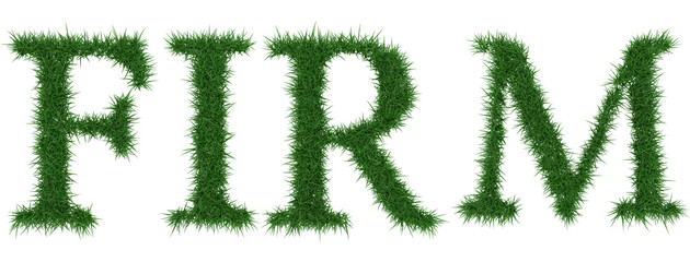 Firm - 3D rendering fresh Grass letters isolated on whhite background.