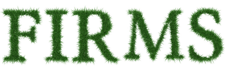 Firms - 3D rendering fresh Grass letters isolated on whhite background.