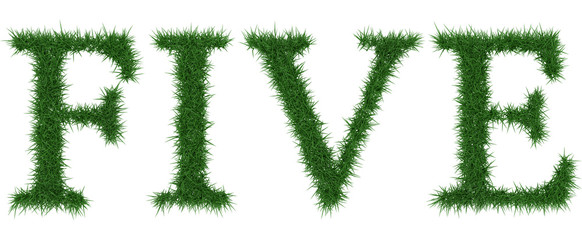 Five - 3D rendering fresh Grass letters isolated on whhite background.