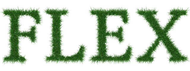 Flex - 3D rendering fresh Grass letters isolated on whhite background.