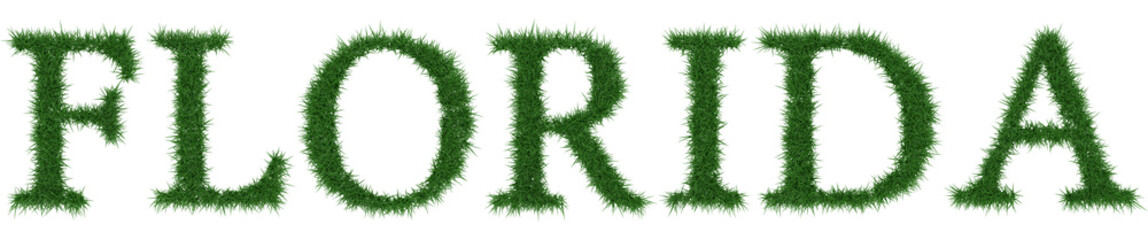 Florida - 3D rendering fresh Grass letters isolated on whhite background.